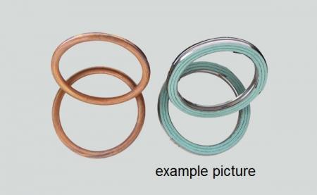 Centauro Uitlaatpakking Ring E290385US