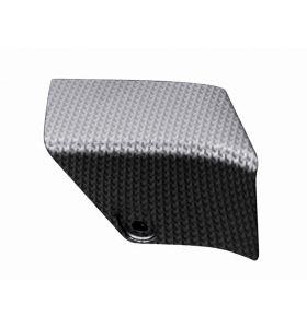 Aprilia Expansion Compartment Door Carbon Look Tuono 125
