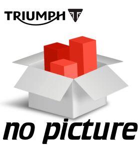Triumph Blokspoiler Matt Alumium Silver