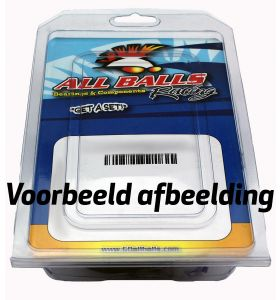 All Balls Uitgaande As Keerring Set 25-4041